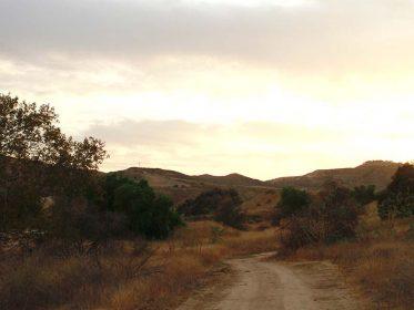 Alamos Image2