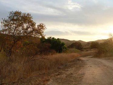 Alamos Image3