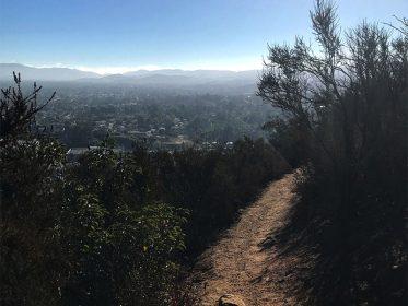 Mtc Trail