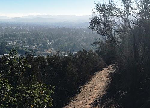 Mt Mccoy Trail Feature